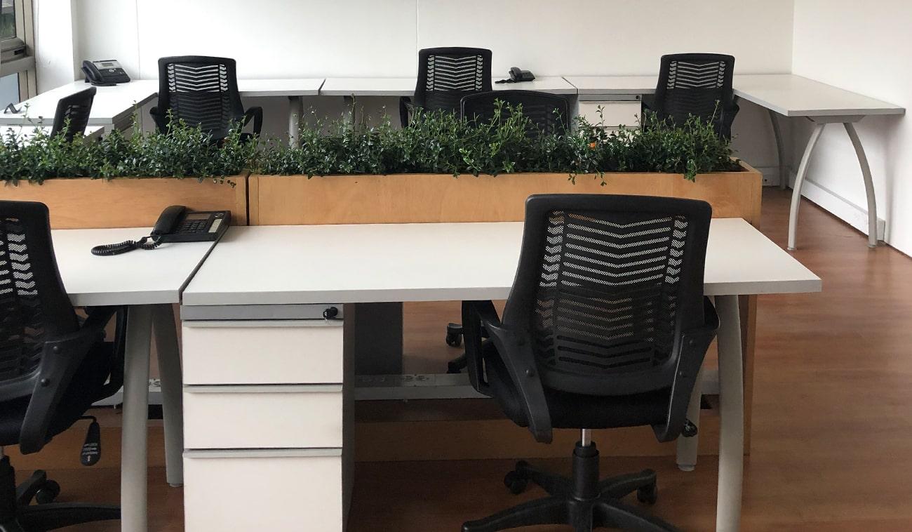 ¿Qué son las oficinas privadas y cómo benefician a mi empresa?